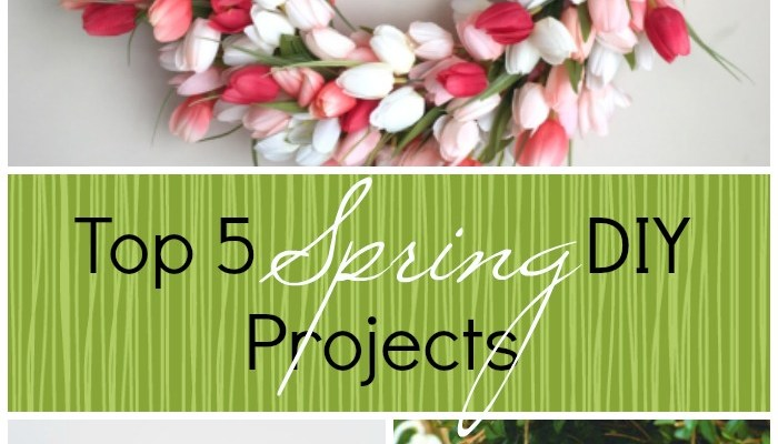Top 5 Spring DIY Projects