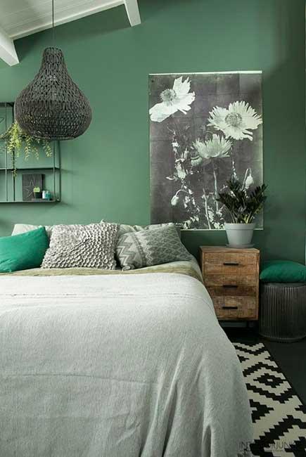 Decorar con plantas: la casa en verde