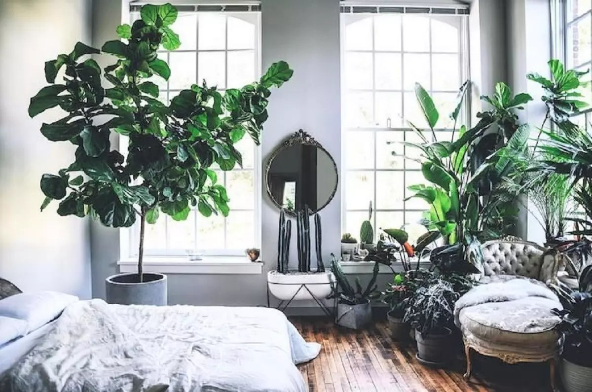«Urban Jungle», la tendencia en decoración más verde