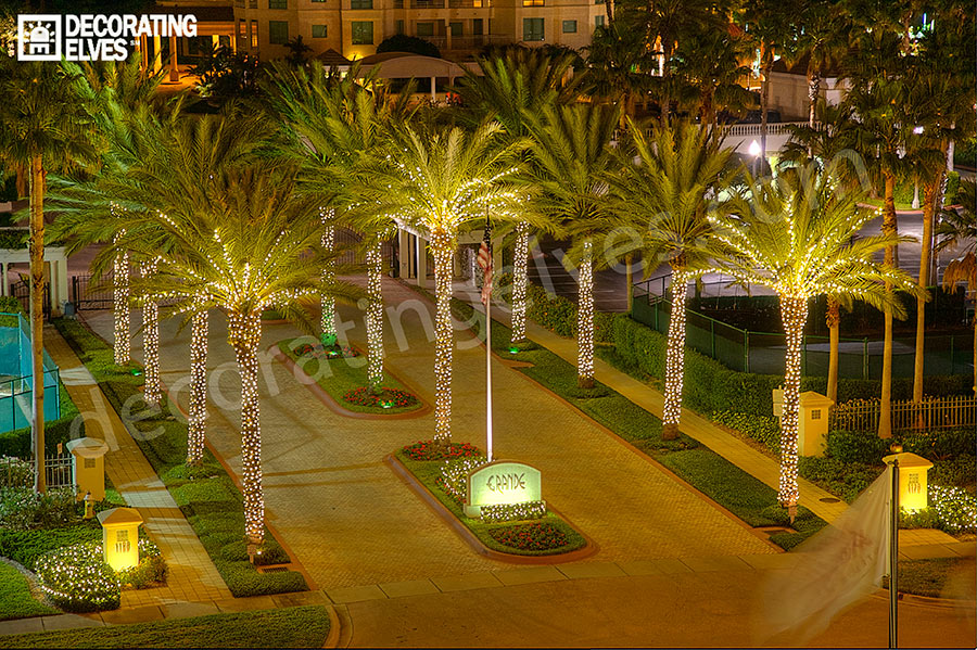 tampa holiday lighting services