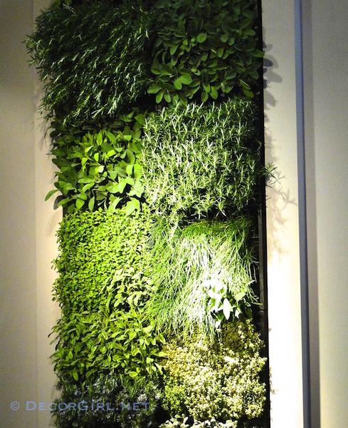 Green herb wall