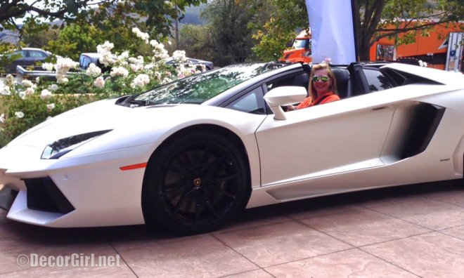 photo-a-doors-on-lamborghini-aventatdor