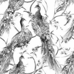 czarno-biale-egzotyczne-orientalne-ptaki-ladna-tapeta-do-pokoju