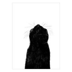 plakat-na-sciane-czarne-koty