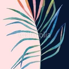 liść-dwukolorowy-roślinność-obraz