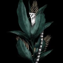 lemur-ciemna-dekoracja
