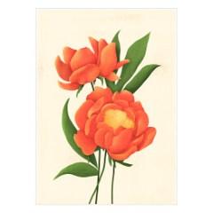 plakaty-kwiaty-czerwone