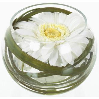 Vase pas cher -SOLI by Sia