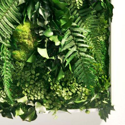 MATIGREEN - Tableau végétal stabilisé 1