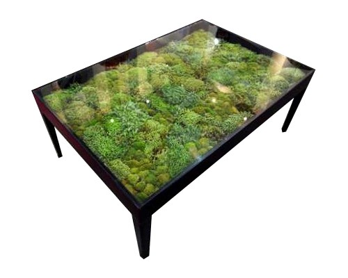 Tables basses originales -Jardin Eden