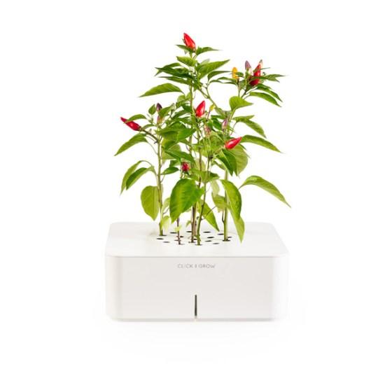 smartpot Click & Grow