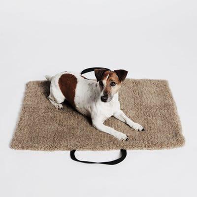 lit pour chien design
