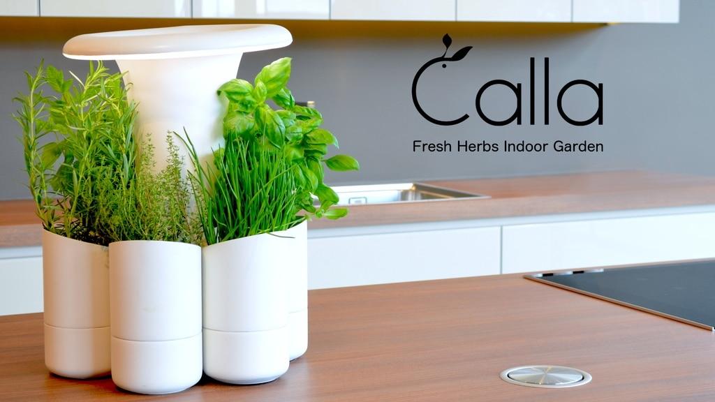 Calla Un Jardin D Interieur Design Qui Conserve Vos Herbes