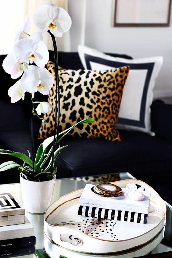 Imprimés exotiques et décoration d'intérieur