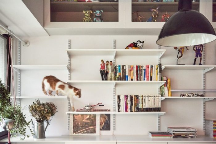 décorer votre appartement si vous avez des chats