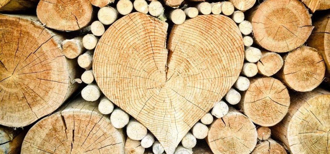 Poêle à bois vs poêle à granulés lequel choisir