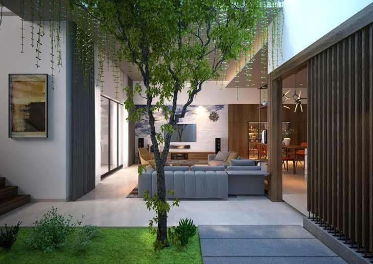 jardin intérieur  maison 3