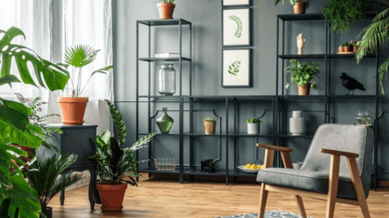 Tendances déco pour 2021les plantes d'intérieur