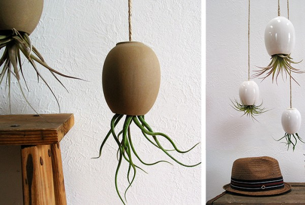 air-plant-pods_michael-mcdowell-3-600x403