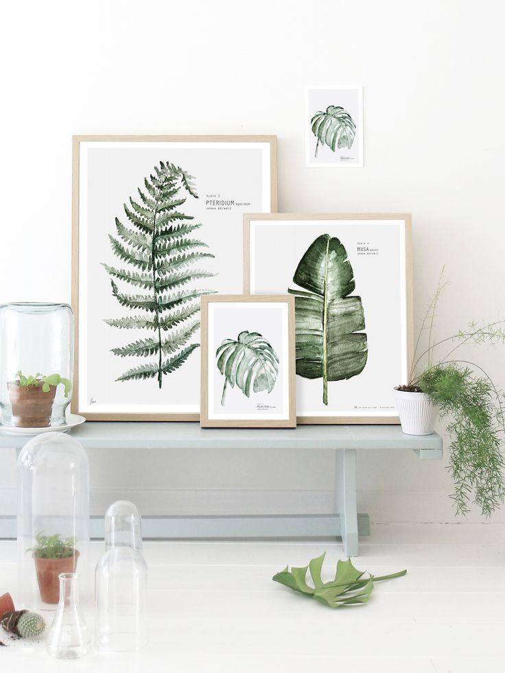 idées-décoration-murale-affiches-vegetales