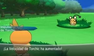Torchic_es_01_bmp_jpgcopy