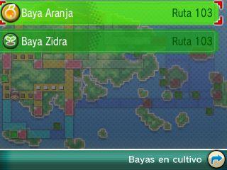 Cartonav Pokemon Rubi Omega Zafiro Alfa 10