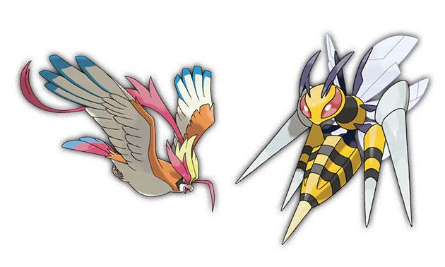 Mega-Pidgeot-Beedrill