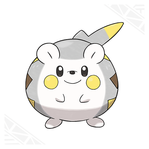 Togedemaru Pokemon 1