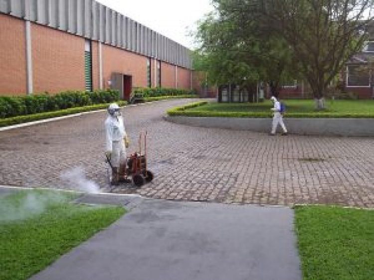 Descupinização Porto Alegre