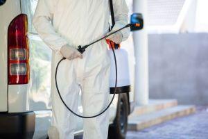 Dedetização Em Condomínios: Cuidados e Precauções
