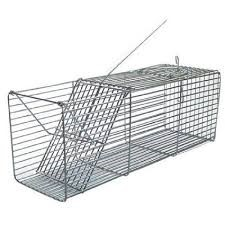 Gaiola para captura de ratos