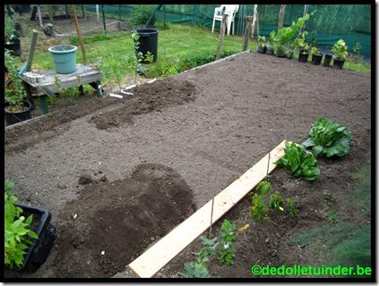 Voorbereiden stukje grond voor al mijn entingen en stekken