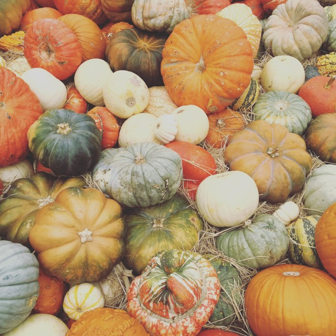 When I Think Of Fall, I think Of Pumpkins