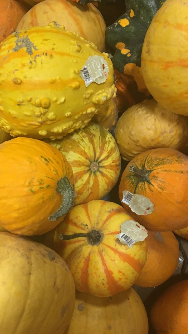 Fall Grocery Store Finds-Decorating For Fall