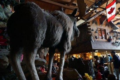 great-wolf-lodge-niagara-falls-lobby02