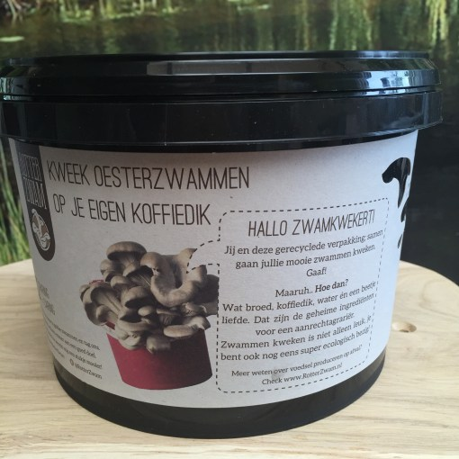 Oesterzwam growkit