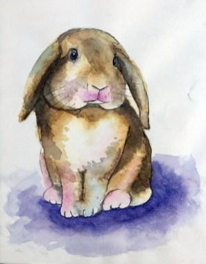 bunny_LRB