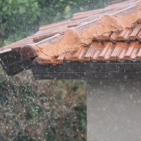 Belleville Gutter Cleaning Service