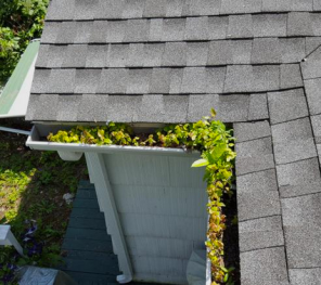 Scotch Plains Gutter Cleaning