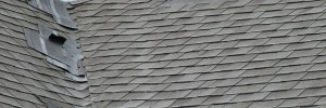 North Haledon Roof Repair Contractor