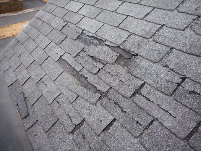 NJ Roof Mold Removal