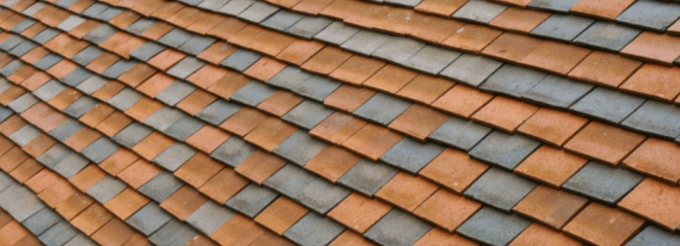Union County Roof Mold Removal