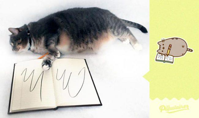 Julien-Therrien-Pusheen-the-Cat-4