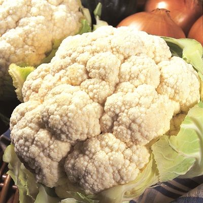 Cauliflower, All the Year Round