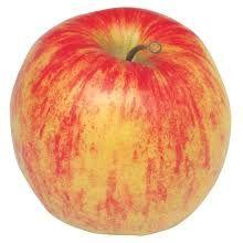 Apple 'Jonagold'  (Bareroot)