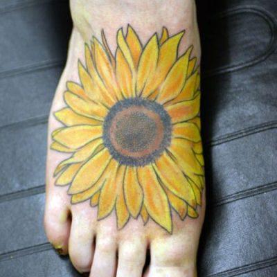 Sunflower, Tall Single
