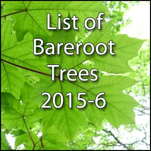 Bareroot Trees for 2015-6