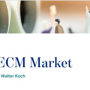 Brazil's ECM Market