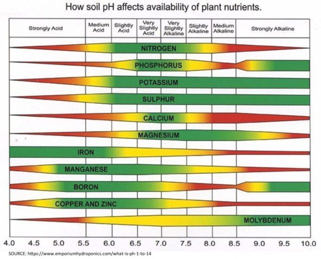 A chart showing how soil pH affects availability of plant nutrients