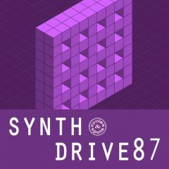 Synth Drive 87 <br><br>– 10 Themes (Bass, Chords, Melody, Beat Elements), Wav + MIDI Files, 236 MB, 24 Bit Wavs.